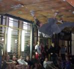 Salezjańskie Liceum Ogólnokształcące w Rumi